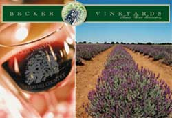 Becker Vineyards Reserve Cabernet