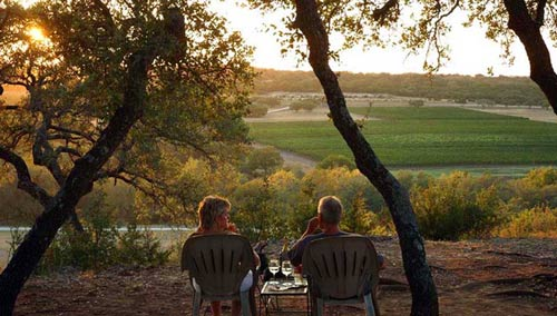Texas Vineyard Scenes Splendor In The Vines Vintage