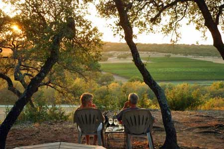 texas hill country wineries 27 wineries 31 days only 15 during