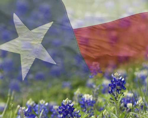 Texas wine and wildflowers a perfect spring pairing for wine texas wine and wildflowers a perfect spring pairing for wine trails mightylinksfo