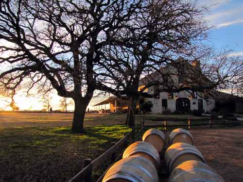 favorite texas wine photograph of 2010 wintery winery sunset in the
